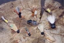 green r. 1 cicada 6-23-01.jpg